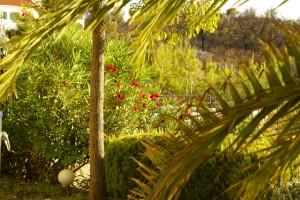 Garden Villa Bella Vista